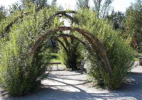 naturgarten gestalten naturnahe gartengestaltung nat 252 rliche g 228 rten anlegen