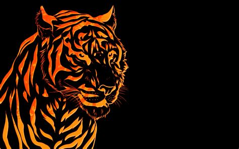 tiger wallpaper black and white hd white tiger wallpaper collections 6621 amazing wallpaperz