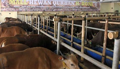 Clusteran Kawasan Kelapa Dua Depok cattle supply drops association says