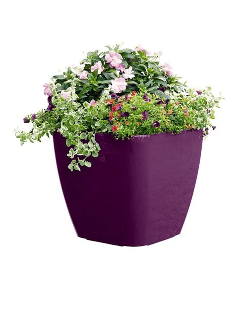 affordable self watering planter lets you grow a countertop garden 49 best freestanding pots and planters images on pinterest