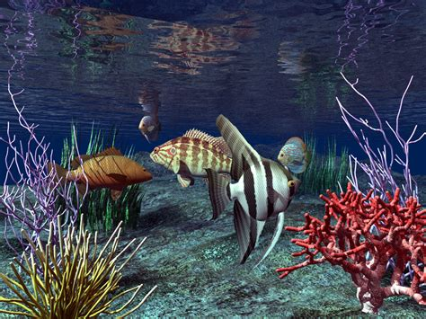 3d wallpaper water fish real wallpapers 3d fish wallpaper