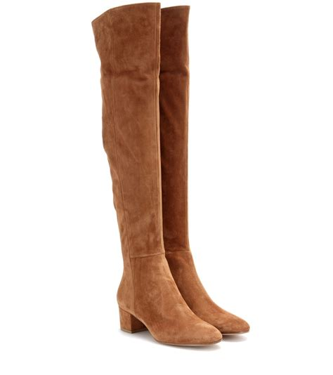 gianvito suede the knee boots in brown lyst