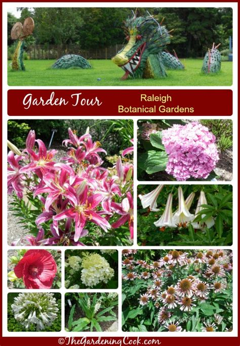 Raleigh Botanical Garden Raleigh Botanical Gardens Visit The Gardening Cook