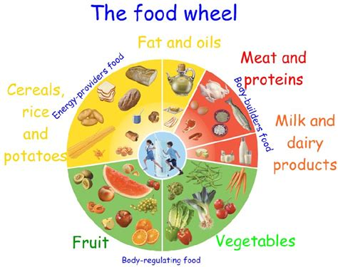 food wheel template corner c p escultor vicente ochoa 3rd primary