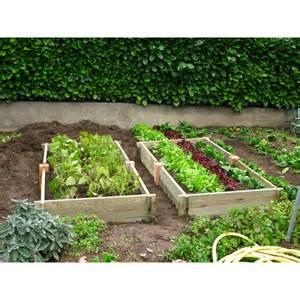 carr 233 de jardin rectangulaire en bois de pin jardin et