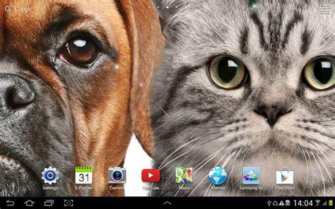 cat  wallpaper apk   personalization app