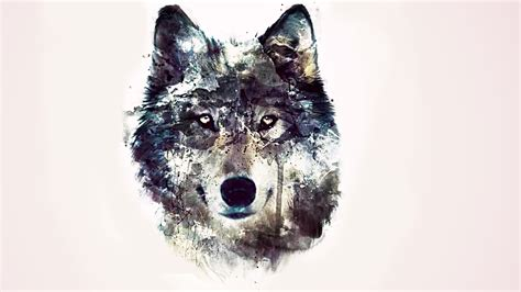 hd wallpapers 1920x1080 wolf wolf hd wallpapers