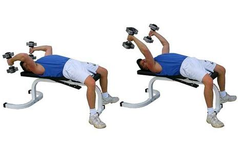 different bench press exercises dumbbell triceps extension how you can choose different
