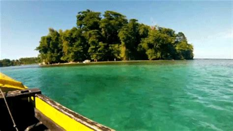 Finder Jamaica Jamaica Gif Find On Giphy