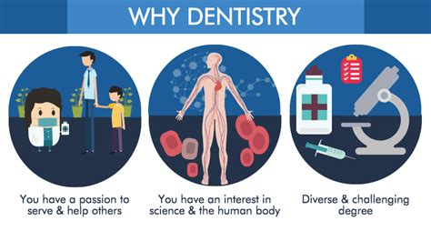 Why Get An Mba When Going To Dental School by Dentistry Course In Malaysia Eduadvisor