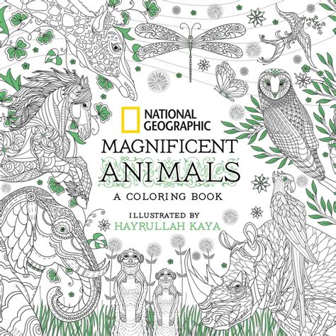 the magnificent book of animals books national geographic magnificent animals national