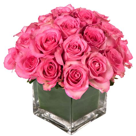 valentines day flower high definition photo and wallpapers valentines day