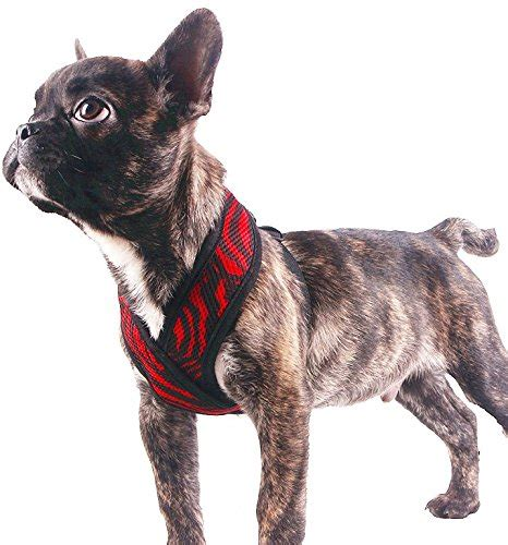 teacup yorkie harness expawlorer choke free small vest x frame design with soft