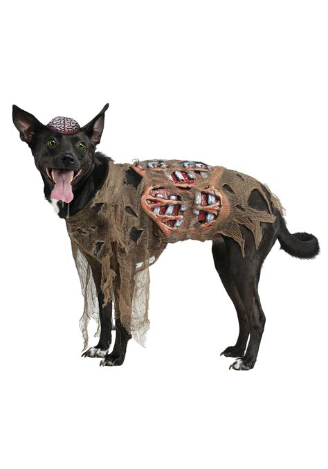 pet costumes for dogs costume