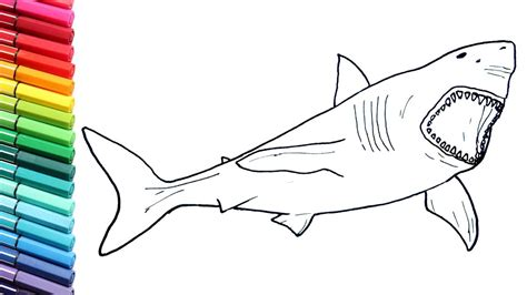 shark pictures to color drawing and coloring megalodon shark how to draw