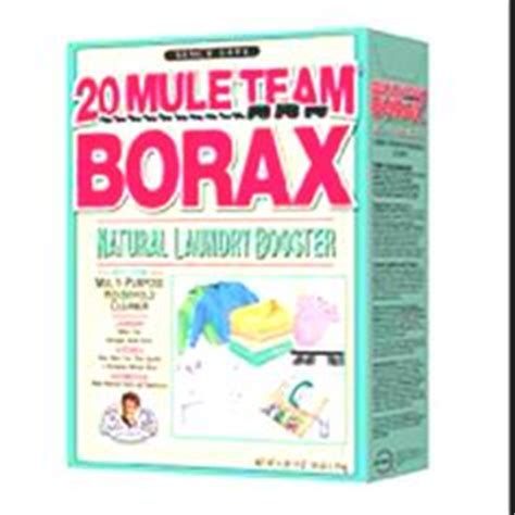 will borax kill bed bugs 1000 images about rid of bugs and stuff on pinterest