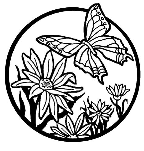 Butterfly And Flower Coloring Pages coloring pages flowers butterflies az coloring pages