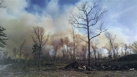 pocono forest fire destroys    acres