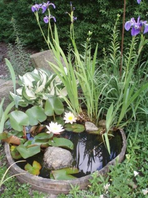 pond ideas for small gardens 30 fresh mini ponds for garden ideas home design