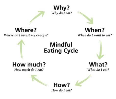 we are what we eat holistic thinking books diet plan dieting cycle image 744966