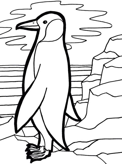 coloring pictures of baby penguins emperor penguin coloring page az coloring pages