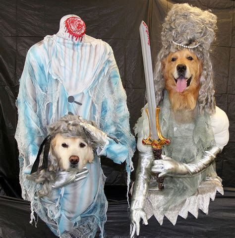 ghost costume for dogs 11 terrifying ly hilarious costumes rover