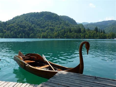 swan boats facebook swan boat swan boats pinterest white flowers boats