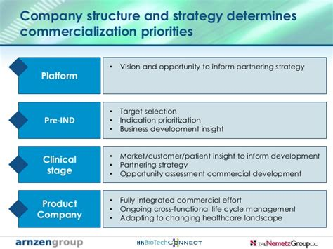commercial model pharma biotech journey through the phases of commercializing a