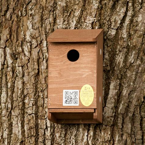 house sparrow nest box design house sparrow nest box design 28 images handmade house sparrow terrace hinged roof