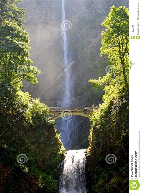 cascadas con 225 rboles imagui cascadas de multnomah con el puente imagenes de archivo
