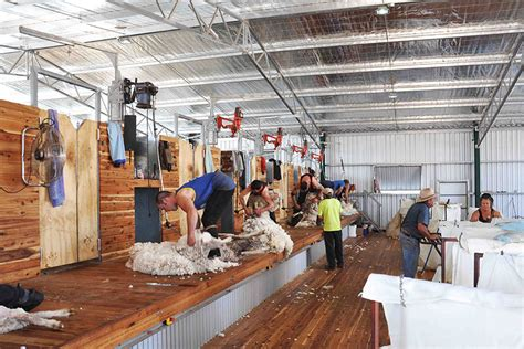 Shearing Shed Solutions by Gallery Proway