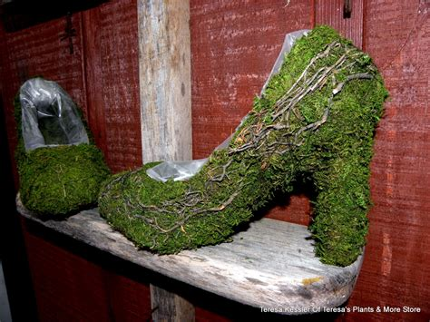 Moss Planters by Moss And Vine Shoe Planter Shoe Basket Moss By Teresab123