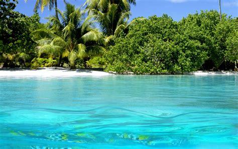 tropical island paradise tropical paradise beach blue lush green nature 1482 hd