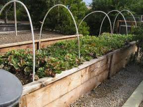 building the raised vegetable bed