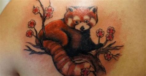red panda tattoo panda panda cherry blossom