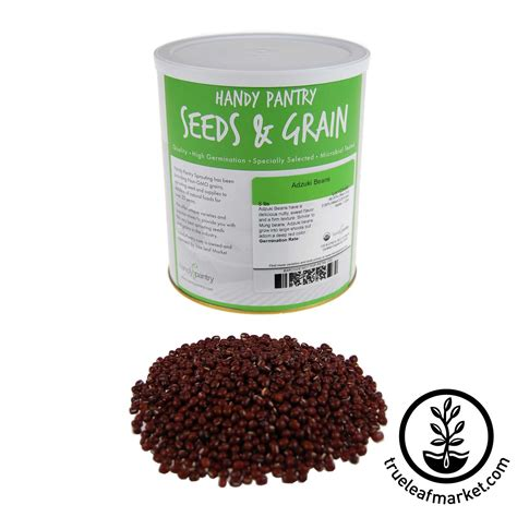 Adzuki Bean 100 Gr organic adzuki bean adzuki beans for sprouting