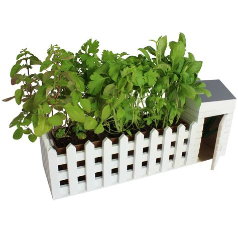 Indoor Herb Planter Box by Indoor Garden Allotment Plant Pot Planter Herb Window Box