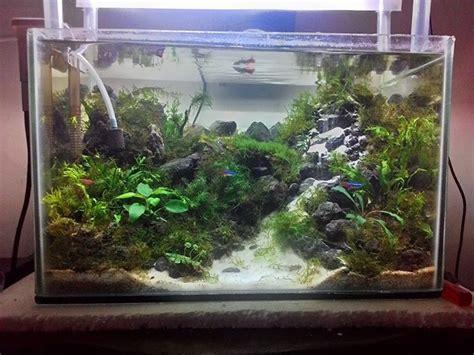 232 best aquarium aquascape images on
