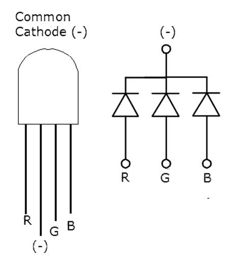 led common cathode 5mm led rgb common cathode clear