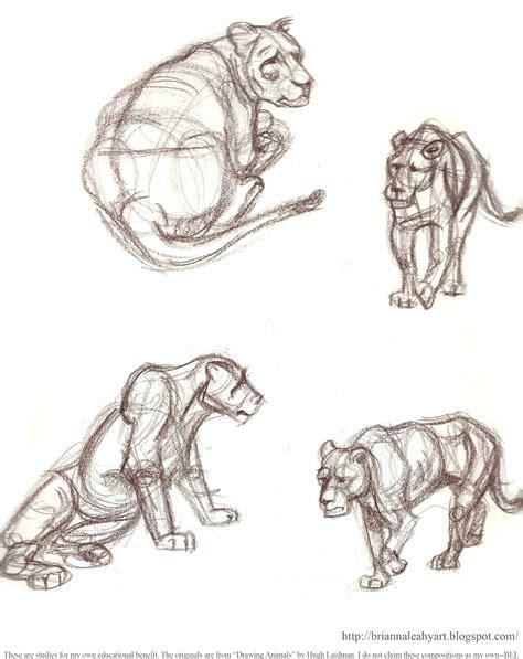 big sketchbook by bri e leahy my sketchbook pages big cat studies