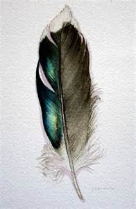 water color feather original watercolor feather study 177 mallard feather from