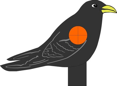 printable pheasant targets animal shooting targets to print www imgkid com the