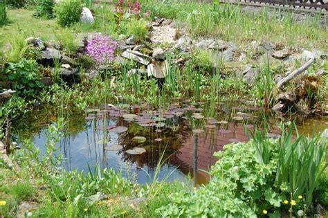 naturnaher garten anlegen naturnahe gartengestaltung einen naturgarten anlegen