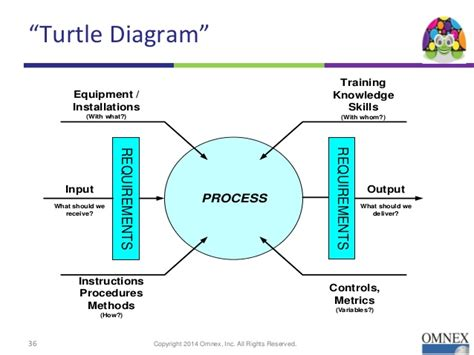 turtle diagram template turtle diagram pictures to pin on pinsdaddy