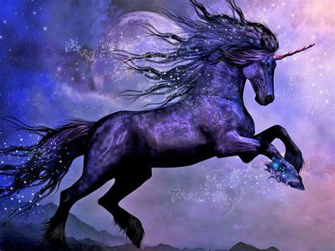 black unicorn hd wallpaper fantastic black horse unicorn on the background of the