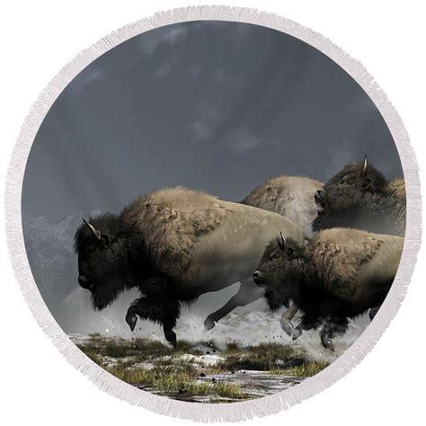 90cm Height Portable White Wooden Fence Back Drop 1 daniel eskridge buffalo of the american west wall
