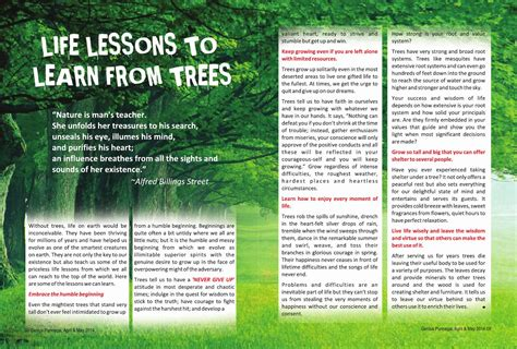 7 Lessons To Learn From Losing Your by Issuu Lessons To Learn From Trees By Punnagai Ulagam