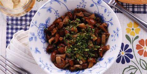cucinare chiodini ricette chiodini in umido come cucinare chiodini in umido