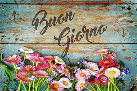 di giorno fiori immagini e frasi quot buongiorno quot immaginiamo org