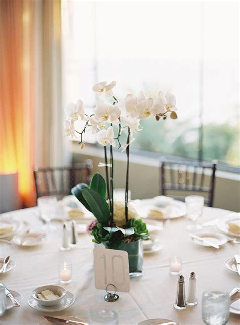 potted orchids reception centerpiece elizabeth anne